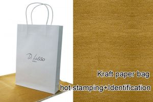 Shopping Bag - Paper