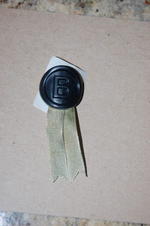 Plastic Medallion with Ribbon